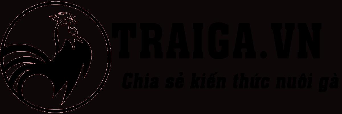 Traiga.vn – Trang cập nhật kiến thức nuôi dưỡng gà đá tốt nhất